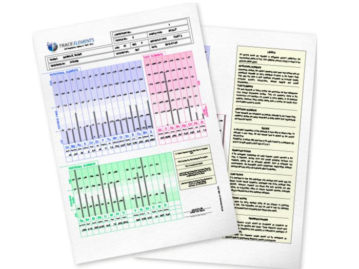 Hårmineralanalys rapport diagram
