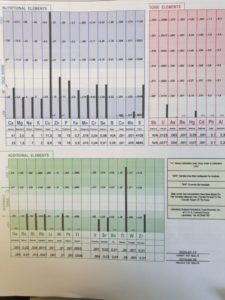 Hårmineralanalys panel staplar